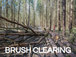 Brush Clearing Service